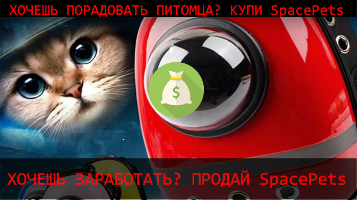 курс SpacePets