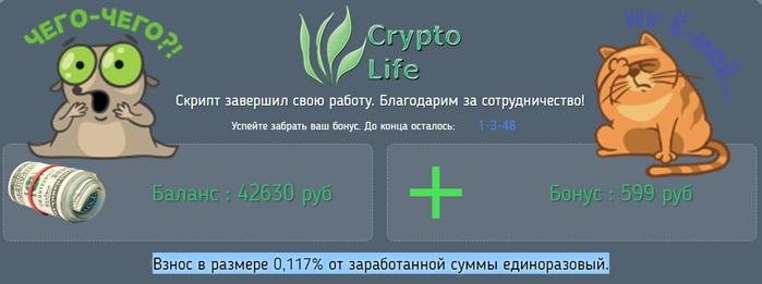 платформа crypto life