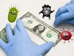 вирусы на деньгах